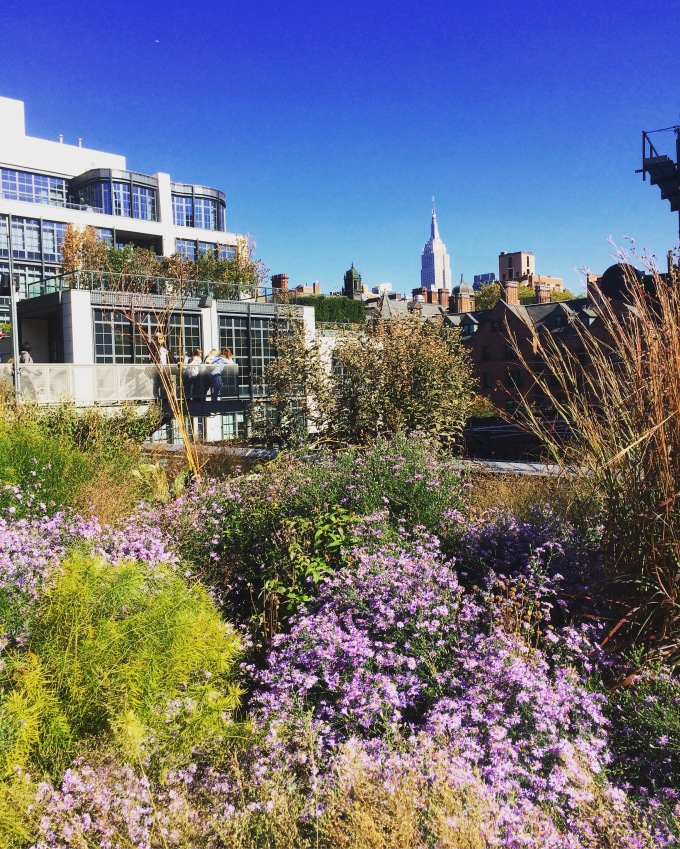High Line NYC cityscape.jpg